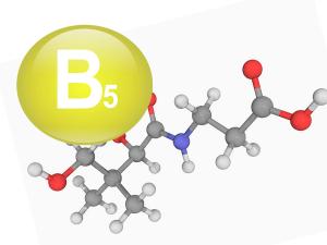 b5 vitamin