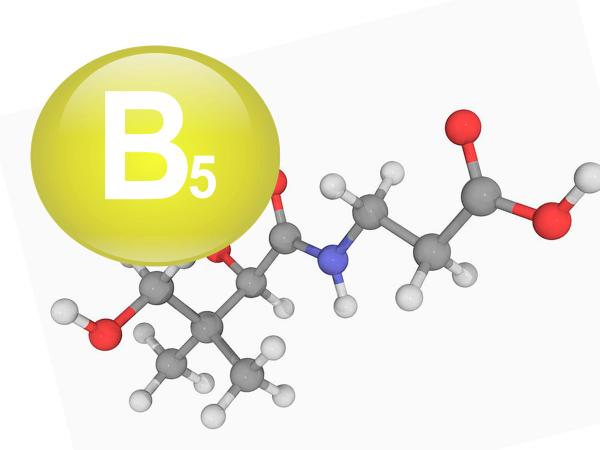 A hajerősítő B5 vitamin